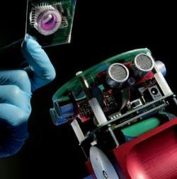 Gordon: el robot con cerebro formado por neuronas de rata. La mano de la imagen porta el cerebro.