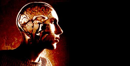 Vitamina D y esclerosis múltiple